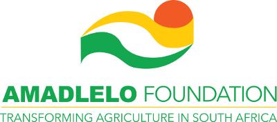 Amadlelo Foundation